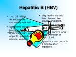 hepatitis b hbv