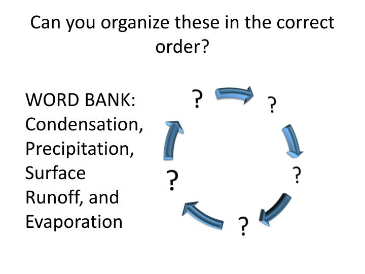 Can you organize these in the correct order?