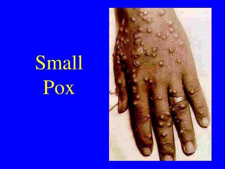 Small Pox
