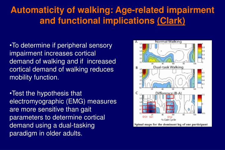 Automaticity of walking: Age-related impairment and functional implications