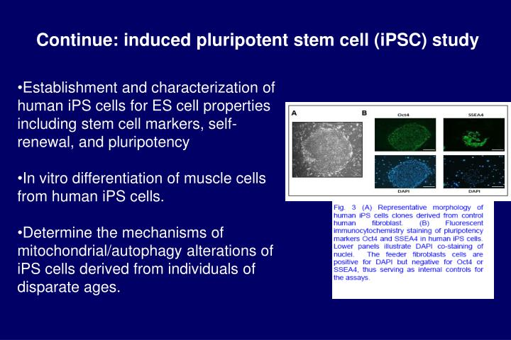 Continue: induced pluripotent stem cell (