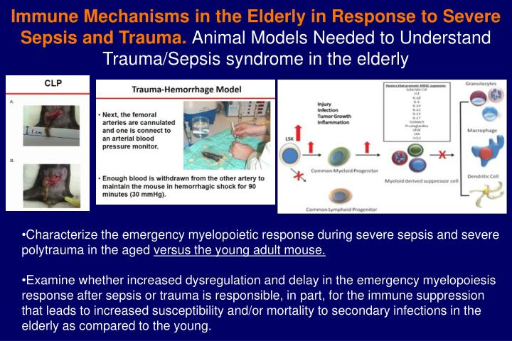 Immune Mechanisms in the Elderly in Response to Severe Sepsis and Trauma.