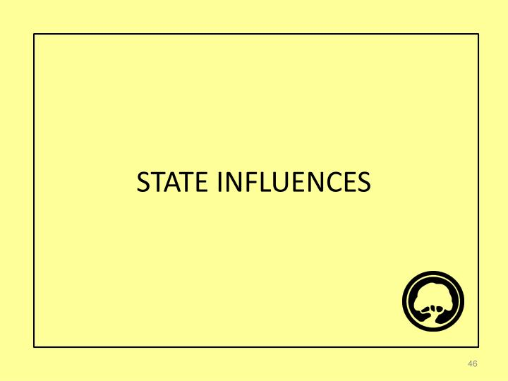 STATE INFLUENCES