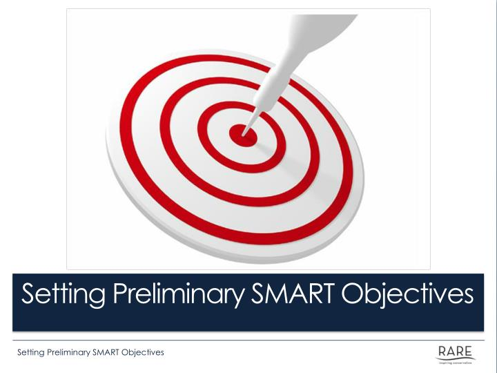 Setting preliminary smart objectives
