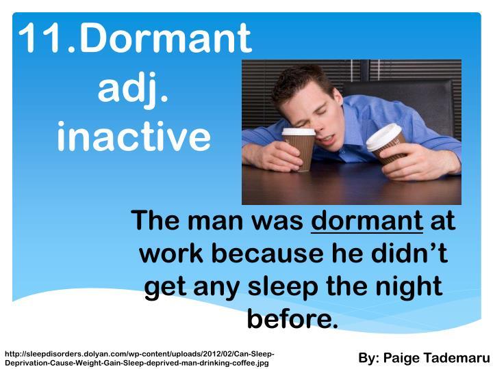 11.Dormant