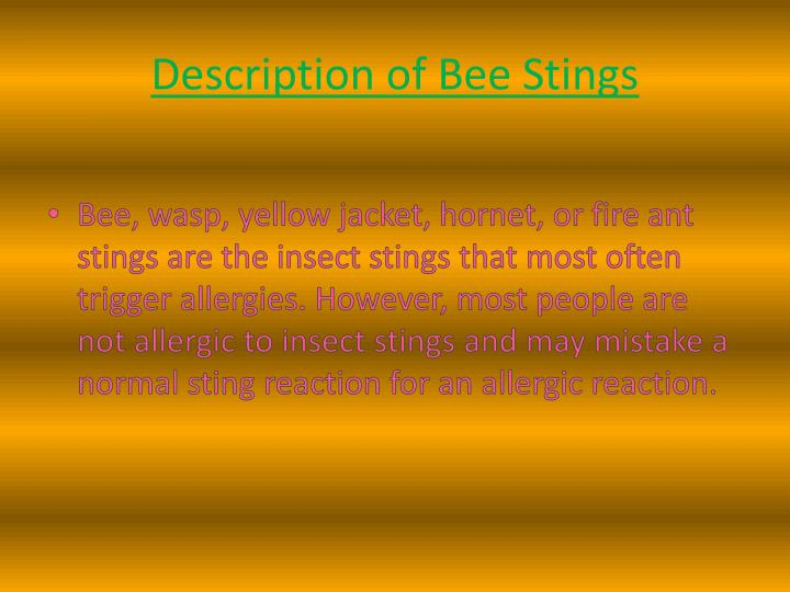 Description of bee stings