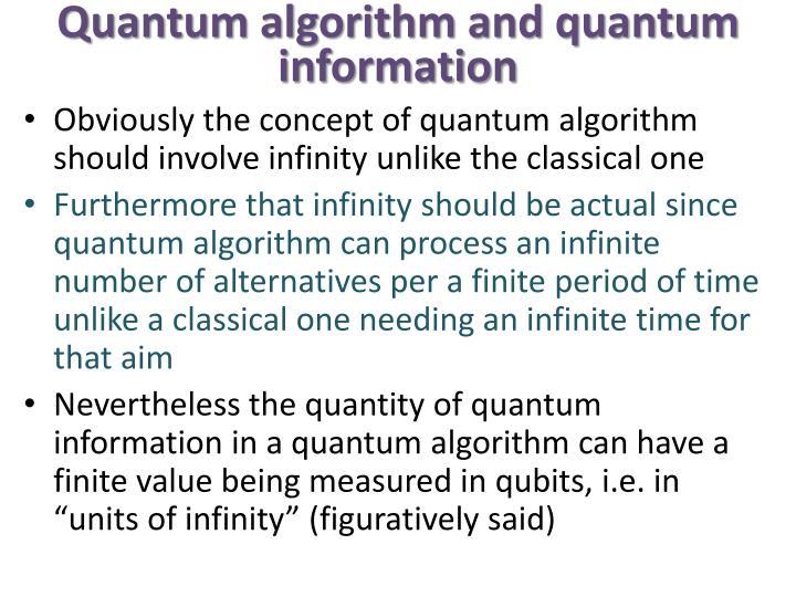 Quantum algorithm and quantum information