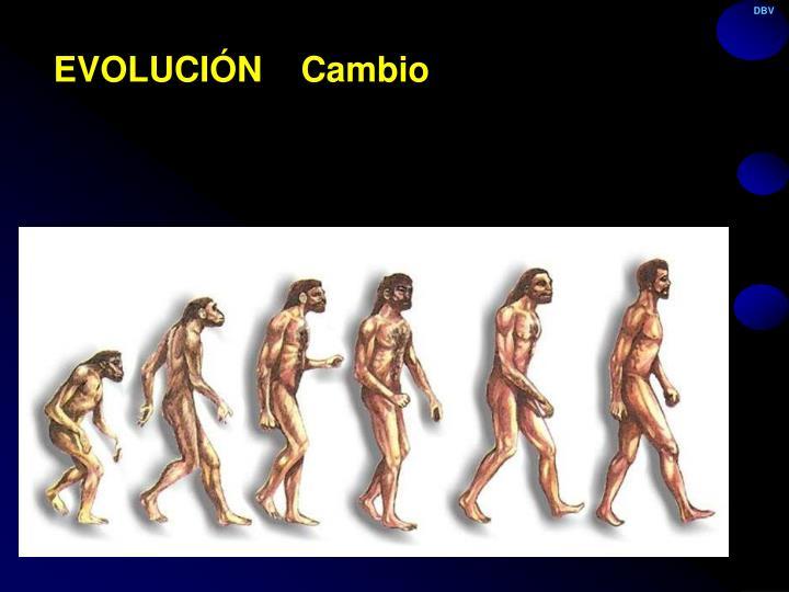 EVOLUCIÓN    Cambio