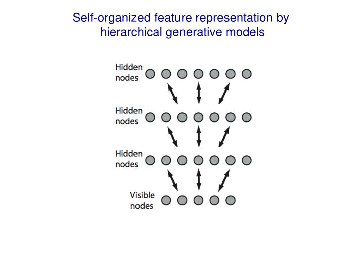 Self-organized feature representation by