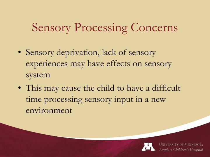 Sensory Processing Concerns