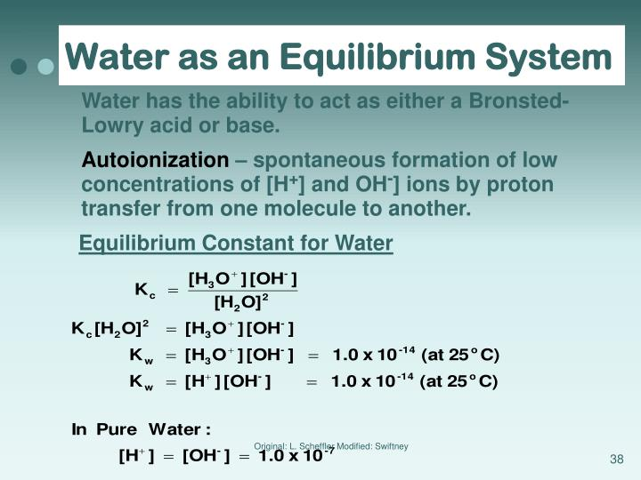 Water as an Equilibrium System