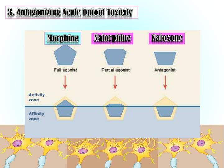 3. Antagonizing Acute