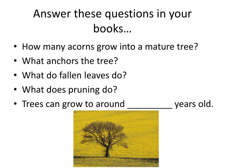 Answer these questions in your books…