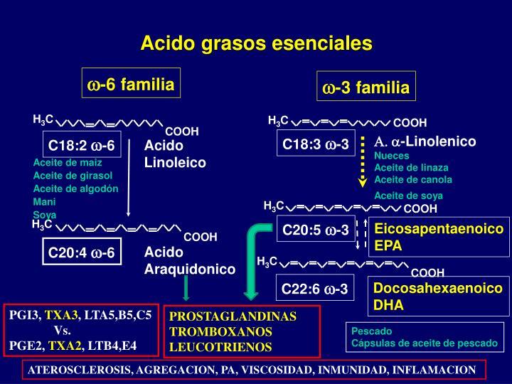 Acido grasos esenciales
