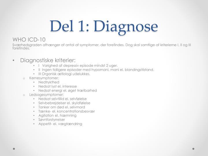 Del 1: Diagnose