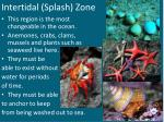intertidal splash zone