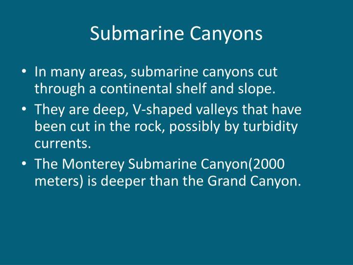 Submarine Canyons