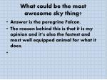what could be the most awesome sky thing