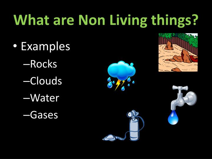 What are Non Living things?