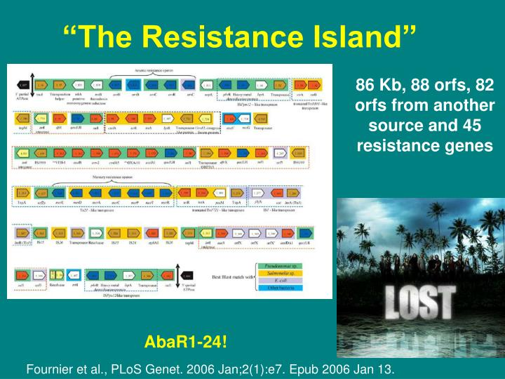 """The Resistance Island"""