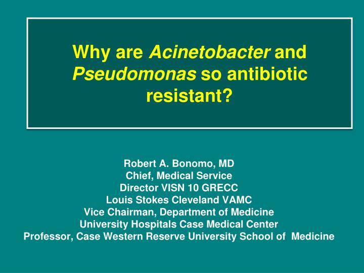 Why are acinetobacter and pseudomonas so antibiotic resistant