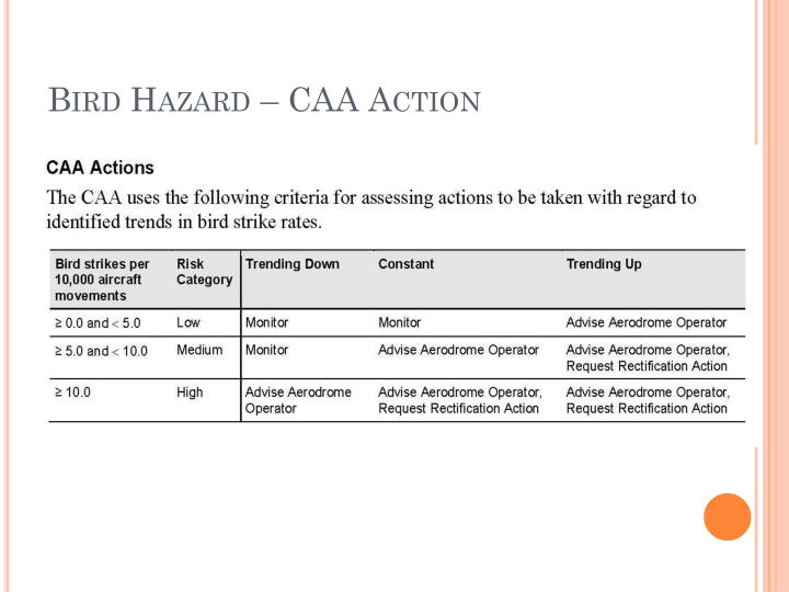 Bird Hazard – CAA Action