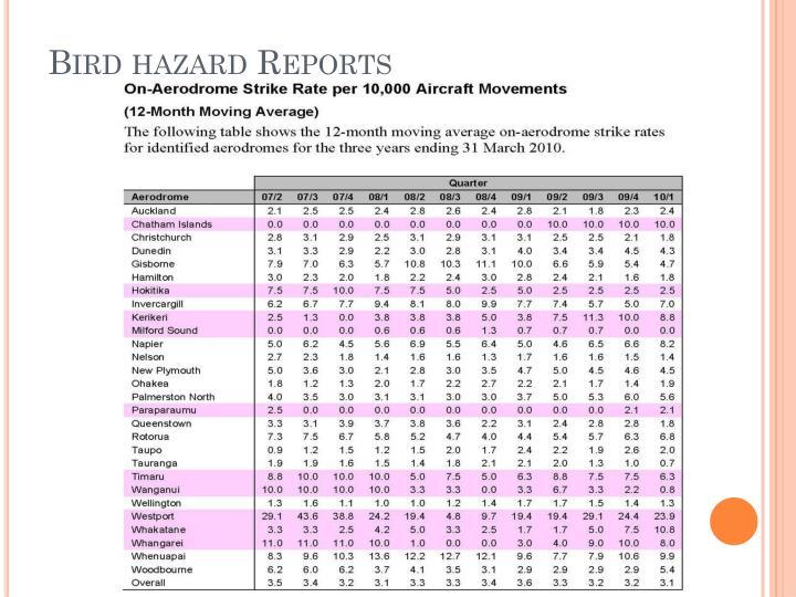 Bird hazard Reports