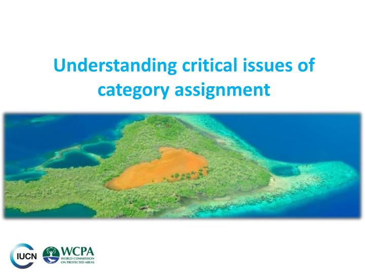 Understanding critical issues of category assignment