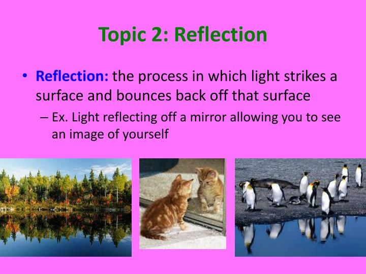 Topic 2: Reflection
