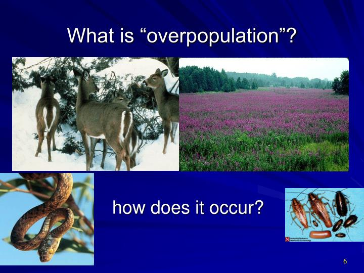 "What is ""overpopulation""?"
