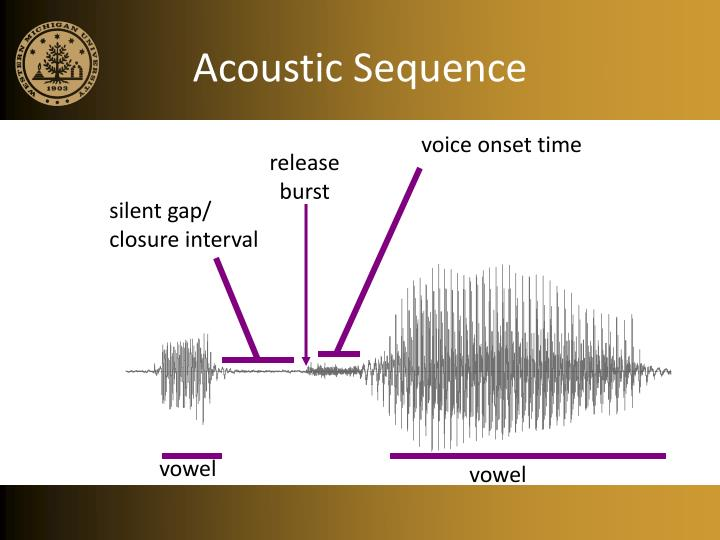 Acoustic Sequence