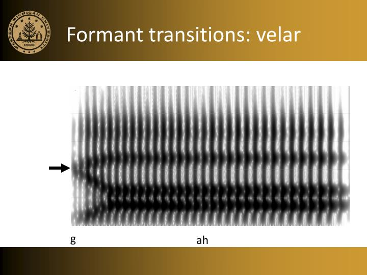 Formant transitions: velar