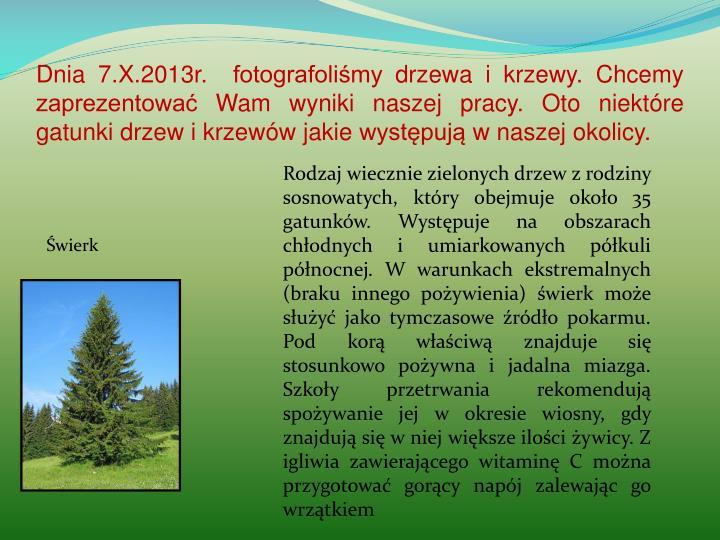 Dnia 7.X.2013r.  fotografoliśmy drzewa i krzewy. Chcemy zaprezentować Wam wyniki naszej pracy. Oto niektóre gatunki drzew i krzewów jakie występują w naszej okolicy.