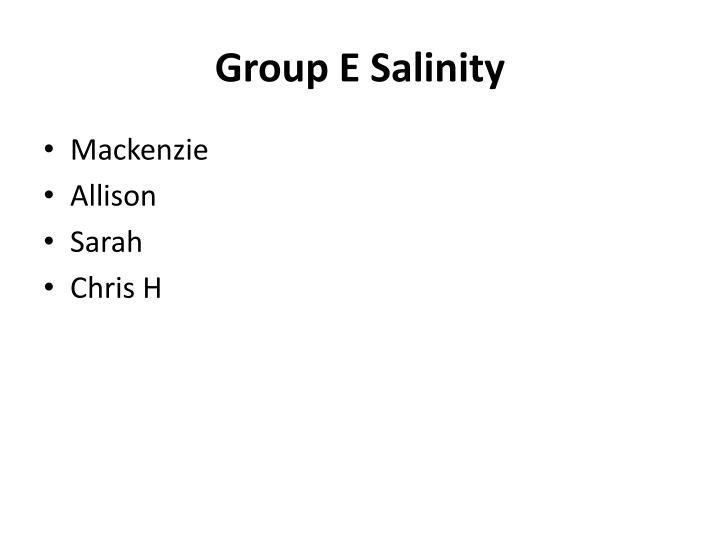 Group E Salinity