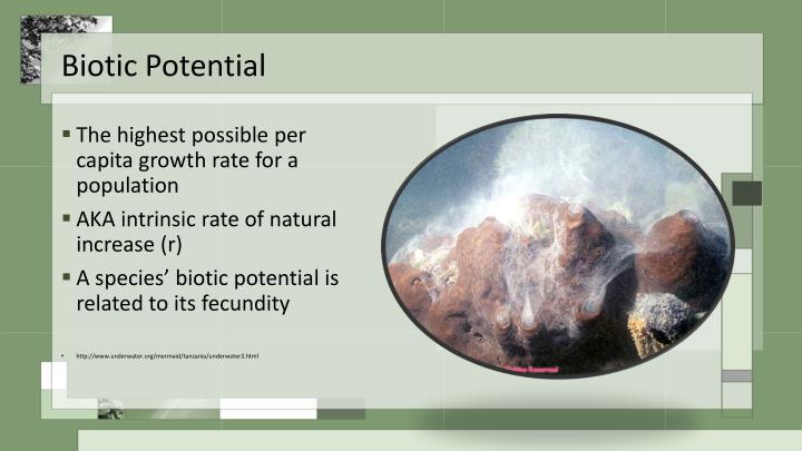 Biotic Potential