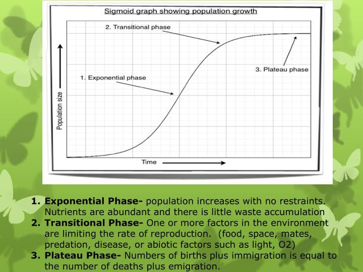 Exponential Phase-