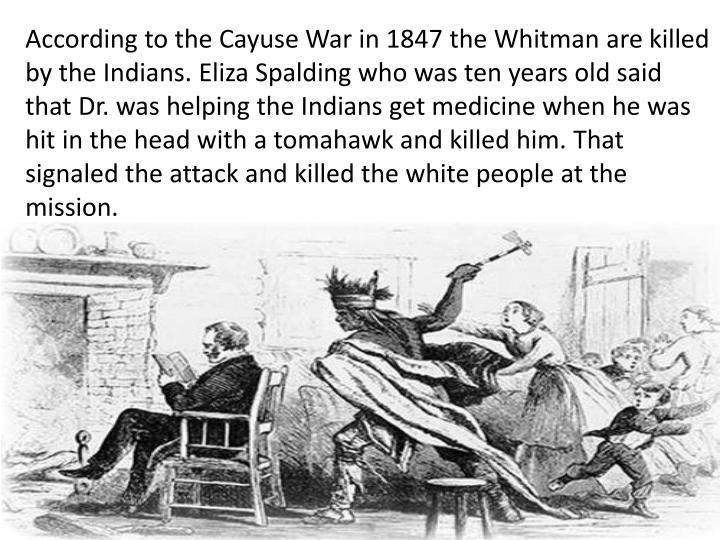 cayuse war essay