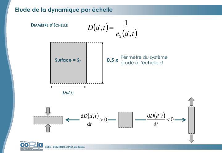 Etude de la dynamique par échelle