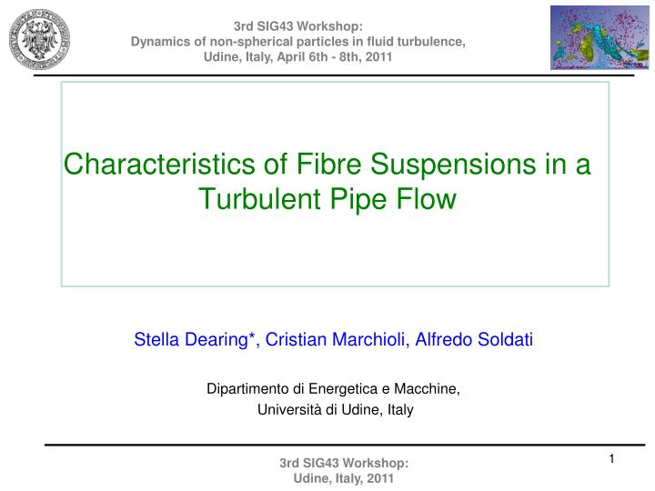 Characteristics of fibre suspensions in a turbulent pipe flow