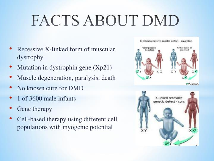 FACTS ABOUT DMD