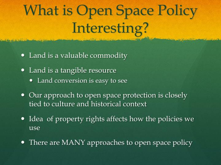 What is Open Space Policy Interesting?