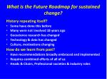 what is the future roadmap for sustained change