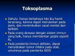 toksoplasma