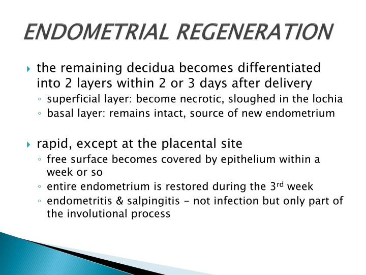 ENDOMETRIAL REGENERATION