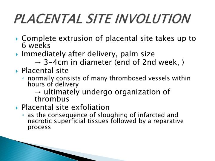PLACENTAL SITE INVOLUTION