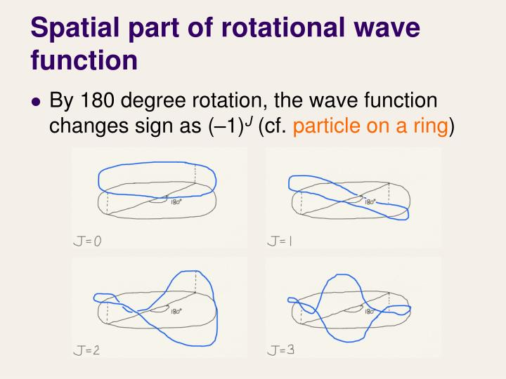 Spatial part of rotational wave function