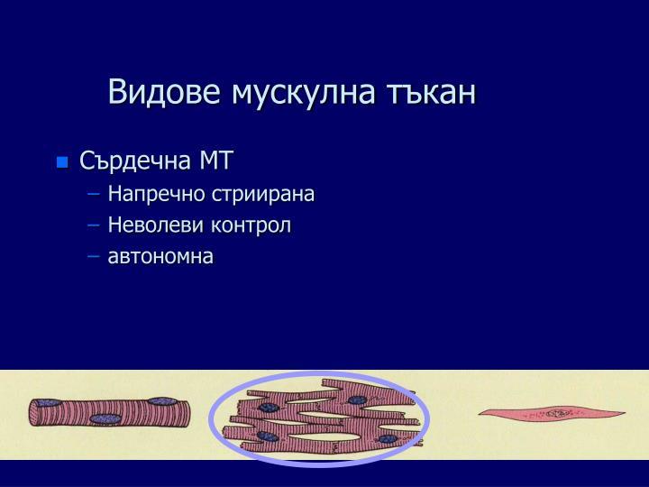 Видове мускулна тъкан