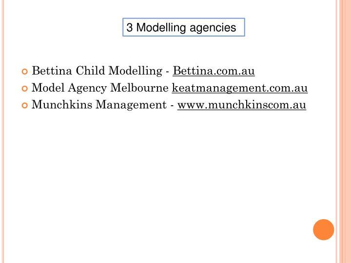 3 Modelling agencies