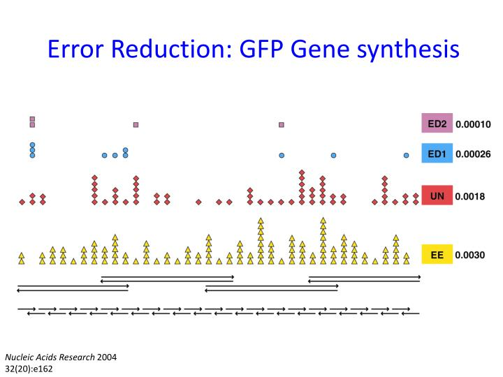 Error Reduction: GFP Gene synthesis