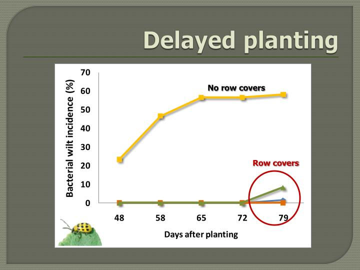 Delayed planting